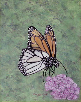 Butterfly Feeding by Kate Johnson