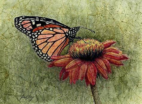 Butterfly in my garden by Janet King