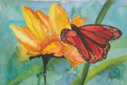 Irene Pomirchy - butterfly