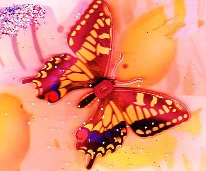 Anne-Elizabeth Whiteway - Butterfly Meets Fish