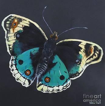 Butterfly by Natalia Chaplin