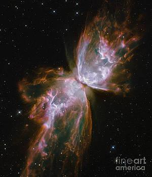 Science Source - Butterfly Nebula Ngc 6302