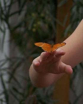 Butterfly on Finger by Christine Drake