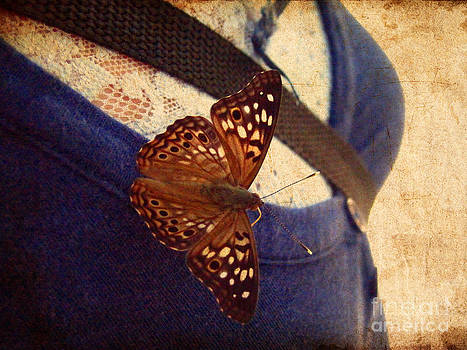Butterfly on Jess by Karisa Kauspedas