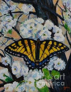 Butterfly on Tree by Jana Baker
