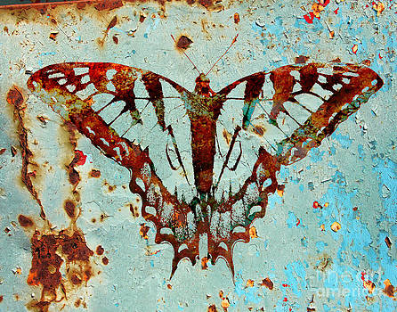 Butterfly Rust by Pam Carter