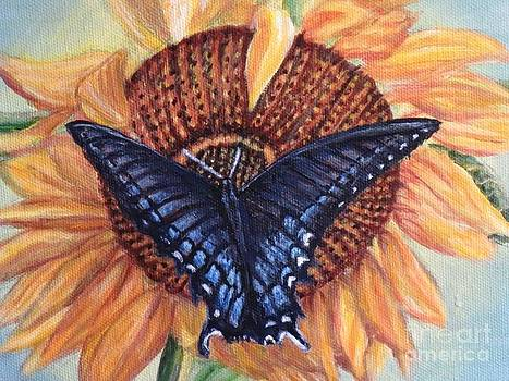 Butterfly Sunday Up-close by Kimberlee Baxter