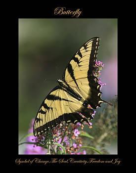 Butterfly Symbol of by Marty Maynard