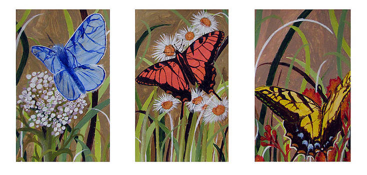 Butterfly Tryptic  by Caitlin Mitchell