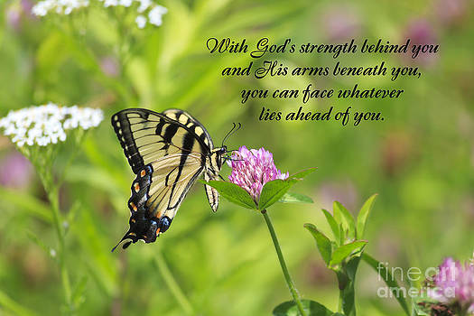 Jill Lang - Butterfly with Religious Quote