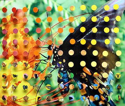 Butterfly2 by Irmari Nacht