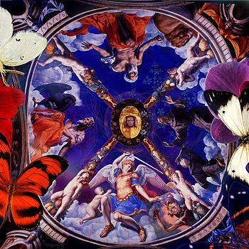 Butterflies in Cappella di Eleonora by Joseph Mosley