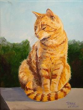 Butterscotch by Terrie Leyton
