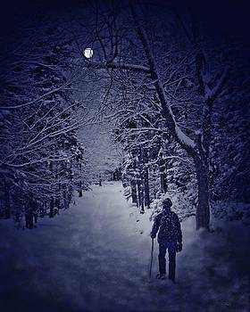 By the Light of the Moon by Pat Edsall