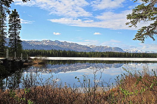 Byers Lake Alaska by Donna Quante