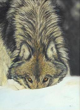 Bytor - Watercolor by GD Rankin