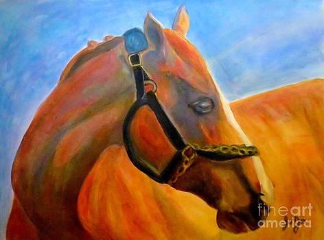 CA Chrome Kentucky Derby winner by Jodie  Scheller