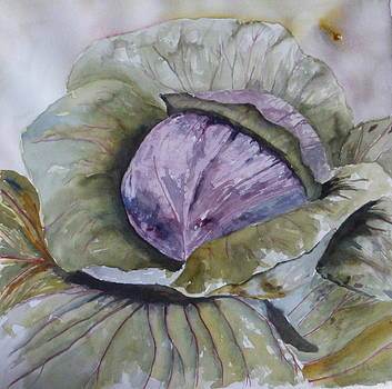 Cabbage by Terri J Rice