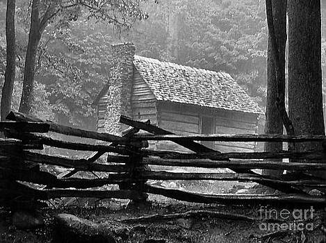 Cabin in the Fog by Julie Dant