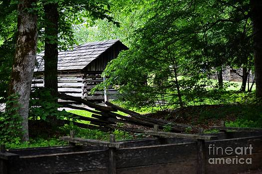 Cabin in the Smokey Mountains by Eva Thomas