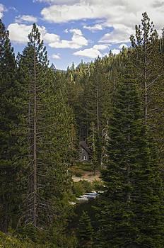 Cabin In The Woods by Sherri Meyer