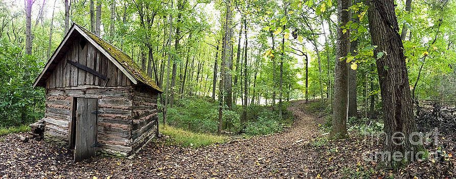 Cabin in Woods with Path by Iris Posner