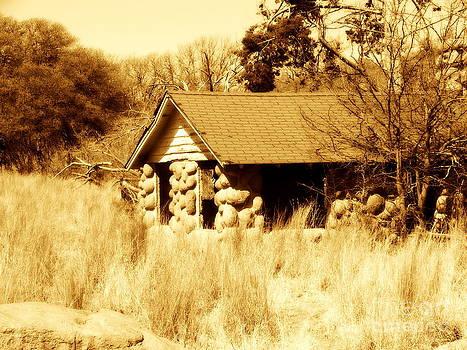 Cabin of Boulders by Mickey Harkins