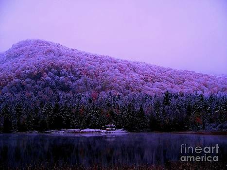Cabin on Clark's Pond by Steven Valkenberg