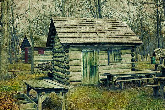 Elvira Pinkhas - Cabins in the Woods
