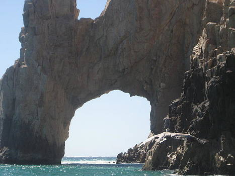 Cabo 2009 by Suzy  Godefroy
