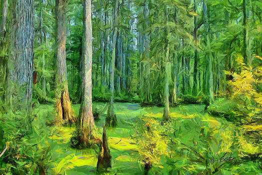 Cache River Swamp by Michael Flood