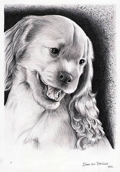 Cachorro - Puppy by Dianah B
