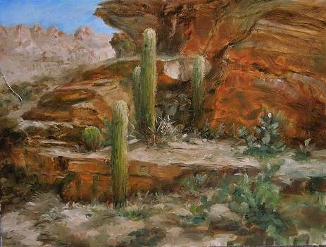 Cactus in the Canyon by Sharen AK Harris