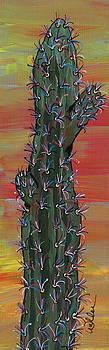 Marcia Weller - Cactus of Color 11