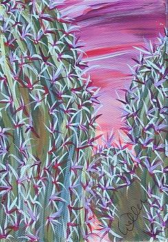 Marcia Weller - Cactus of Color 3