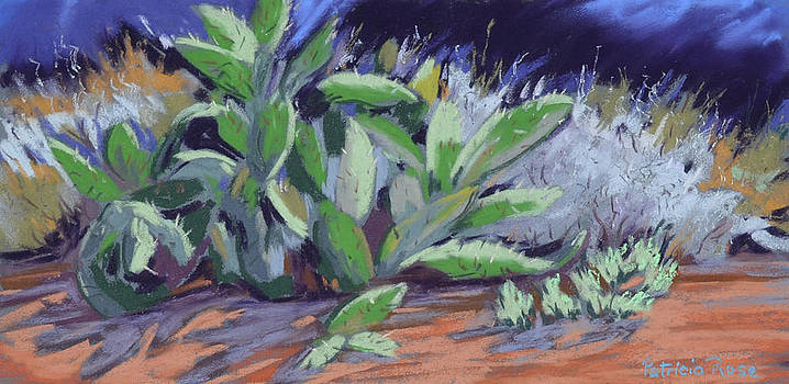 Cactus by Patricia Rose Ford