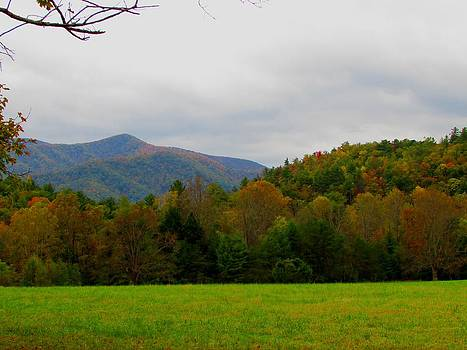 Cades Cove by Kathy Long