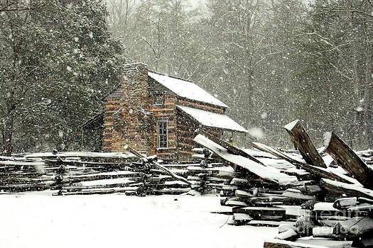 Cades Cove - Snowy Cabin by Michael Creamer