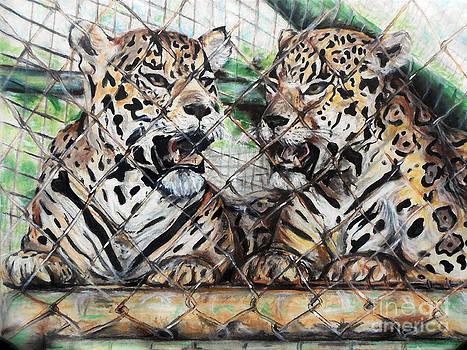 Caged by Melanie Alcantara Correia