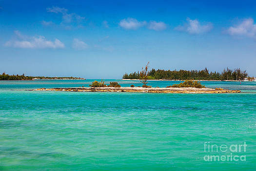 Jo Ann Snover - Caicos Islands coastline