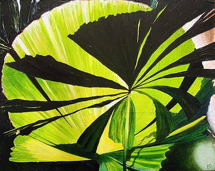 Cairns Botanical by Martin Davis
