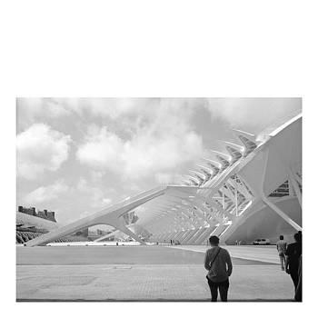 #calatrava #valencia #spain by Angelica Chico
