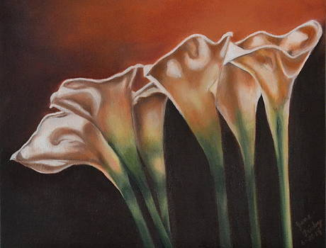 Calla Lilies by Jane Friday
