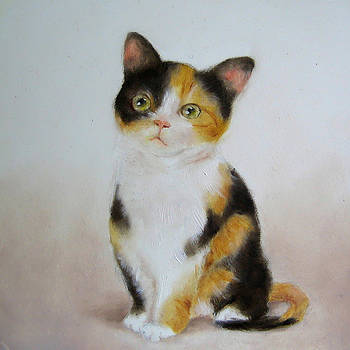 Calico Cat Art Print by Junko Van Norman