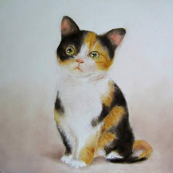 Junko Van Norman - Calico Cat Art Print