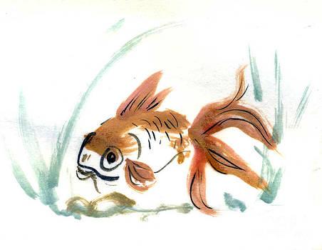 Ellen Miffitt - Calico Goldfish