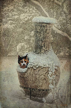 Karen Slagle - Calico in the Chimenea