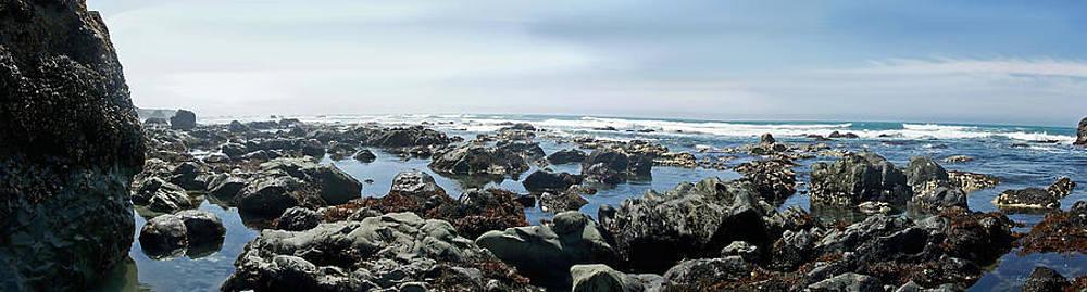 California Beach 1 by Harold