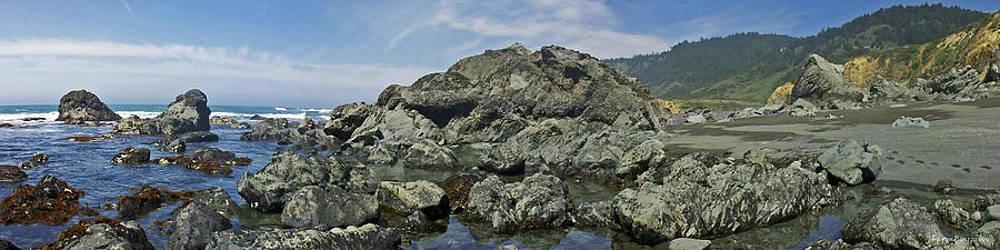 California Beach 2 by Harold