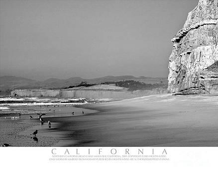California Beach by Kimberly Blom-Roemer